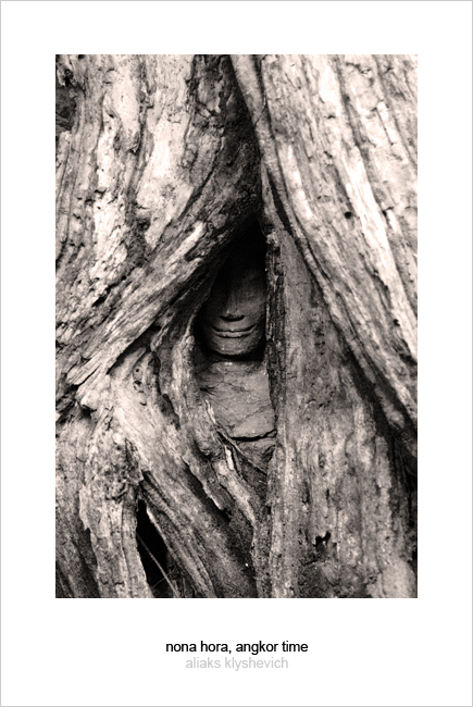 Face of Apsara covered by jungle tree roots in Ta Prohm temple. Angkor, Cambodia