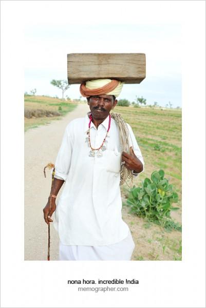 Thar Desert, Rajasthan, India