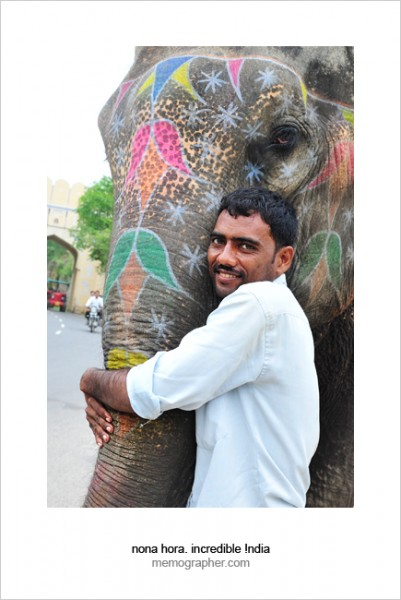 Best Friends. Jaipur, Rajasthan, India