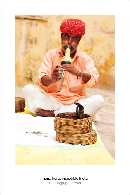 Snake Charmer. Jaipur, Rajasthan, India