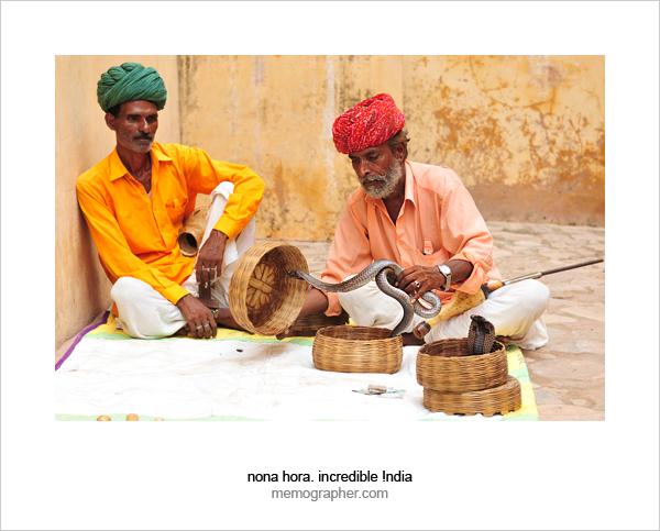 Snake Charmers. Amer, Rajasthan, India