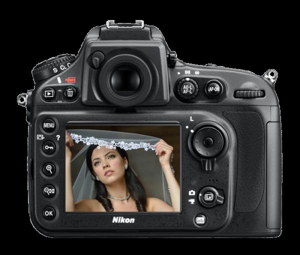 Nikon D800. Back View