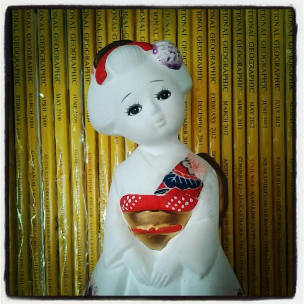 On My Shelves. A Portrait of Japanese Geisha