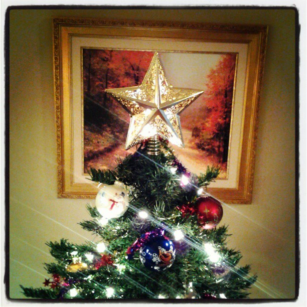 A Bonus Photo. My Christmas Tree 2013. Not On My Shelves anymore. Countdown Started!