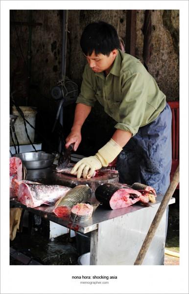 Vietnamese Man. Sapa Vietnam and its tribes