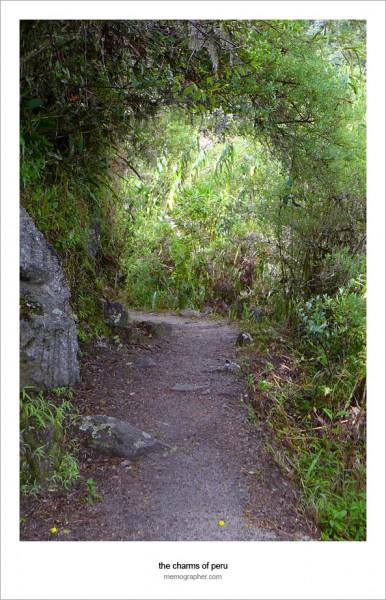 Hiking Peru's Inca Trail to Machu Picchu