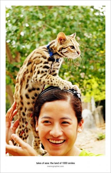 A Dual Portrait. Tiger Temple, Thailand mple, Thailand