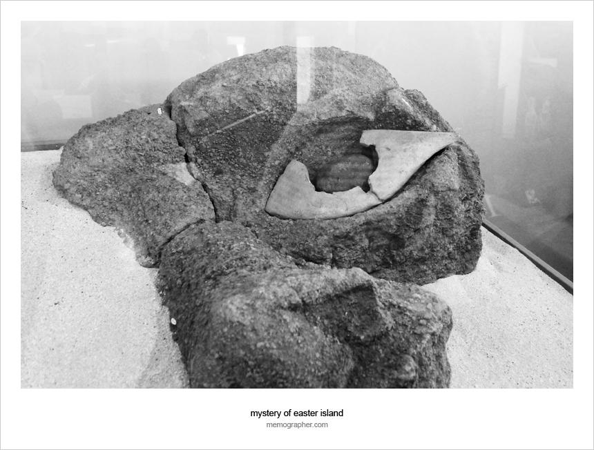 The coral fragments of Moai Eye, Easter Island Museum