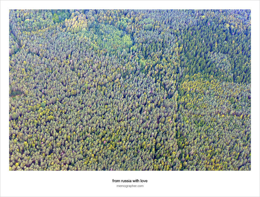 Belarusian Forests around Minsk