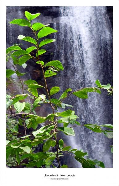 Anna Ruby Falls. Appalachians, Georgia
