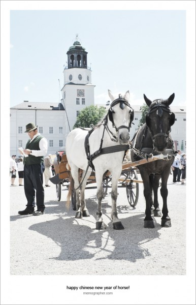 Happy Chinese New Year of Horse!  from Salzburg, Austria