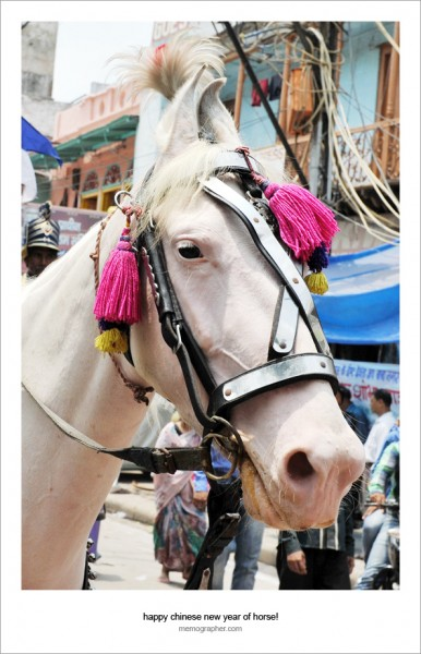 Happy Chinese New Year of Horse!  from Delhi, India