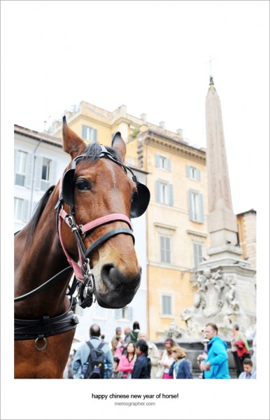 Happy Chinese New Year of Horse!  from Rome, Italy