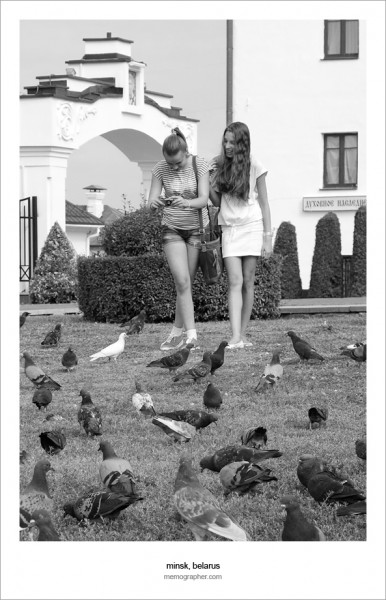 White Dove - Белый Голубь