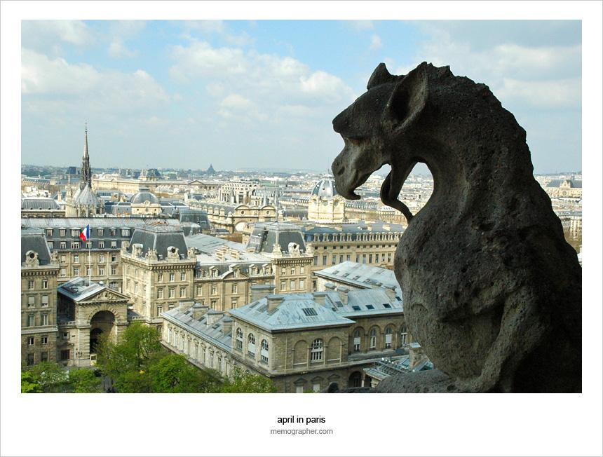 The Gothic Gargoyles of Notre Dame de Paris