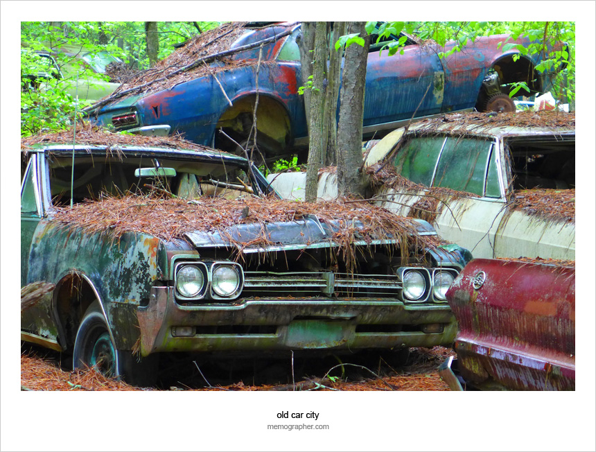 Once a Beauty, Now a Beast. A Photo Story from Vintage Cars Graveyard