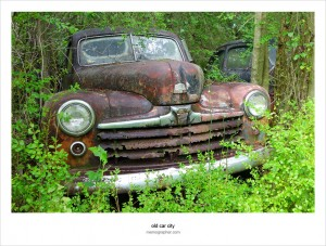 Once a Beauty, Now a Beast. Rusty Vintage Cars and Trucks